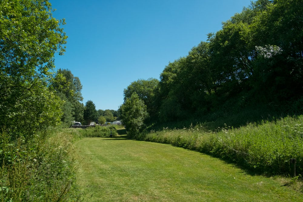 Dog Friendly - Lime Tree Holiday Park welcomes dogs 2659
