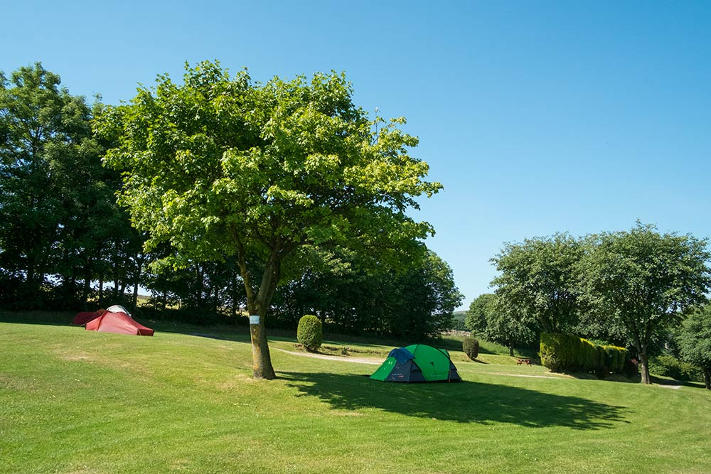 Lime Tree Holiday Park Buxton Camping Campsite 2292