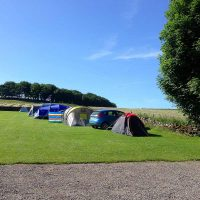 Lime Tree Holiday Park Buxton Camping Campsite 03