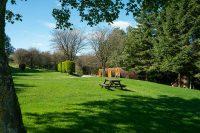 Lime Tree Holiday Park - KYTE3719G